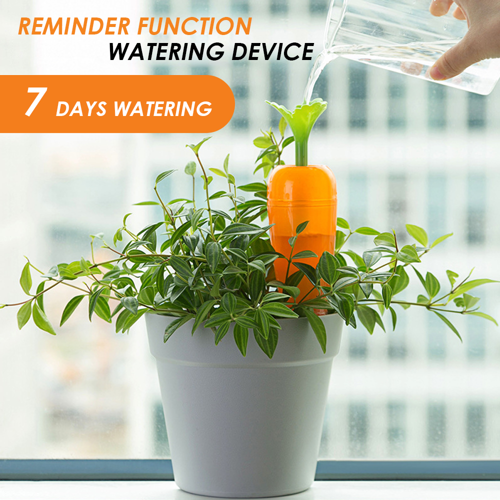 Creative Dripping watering device