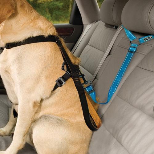 🔥(BUY 3 SAVE $9.99)🔥2021 Must-Have Dog Car Seat Belt
