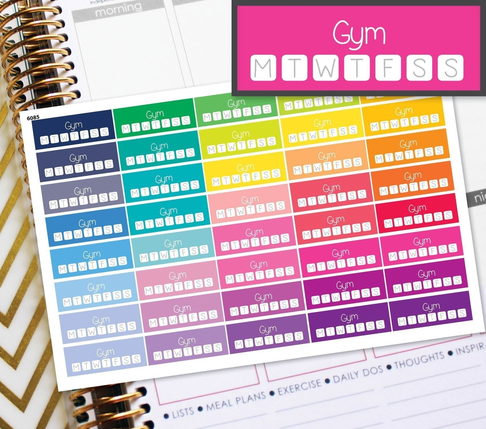 12 Styles of Schedule Planner Stickers Erin Condren Life Work Class GYM Meeting Planner TN Stickers The Happy Planner Pay Tracker Social Media Icon Decals Design for Teenages