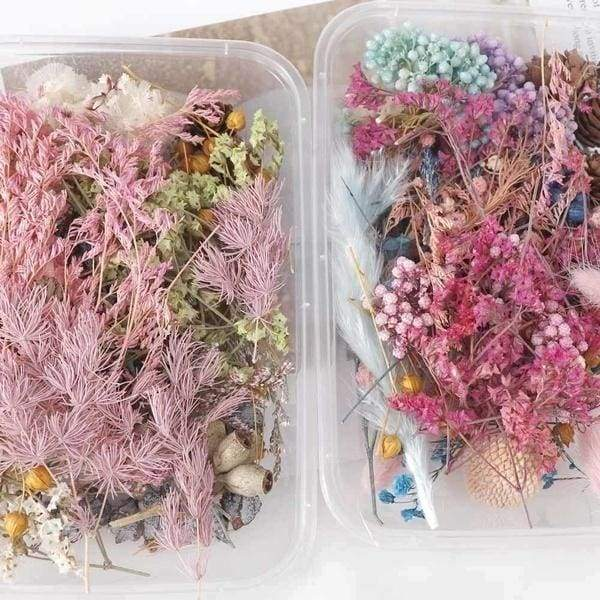 1 Box 10 Styles Real Dried Flower Dry Plants for Aromatherapy Candle Epoxy Resin Pendant Necklace Jewelry Making Craft DIY Accessories