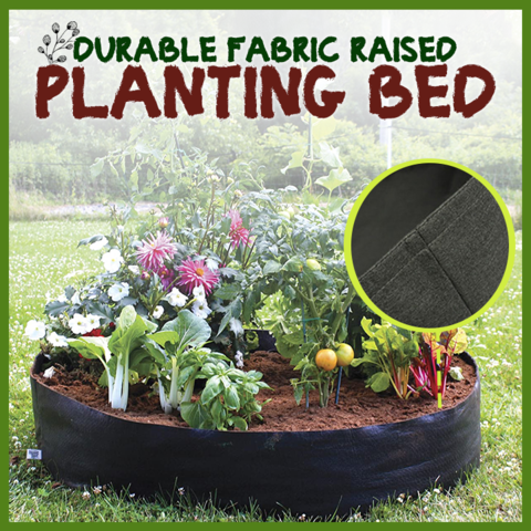 Alitheory™ FABRIC RAISED BED--🔥50% OFF TODAY