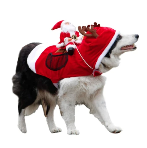 🎅Christmas Pre Sale🧦RUNNING CHRISTMAS PET COSTUME