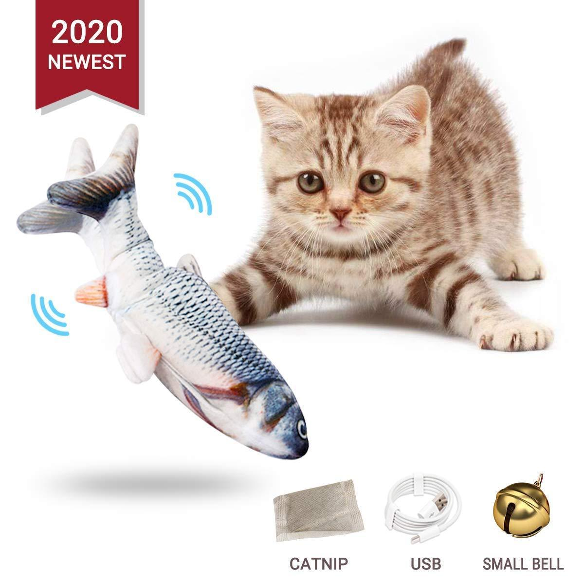 Electric fish funny cat simulation fish