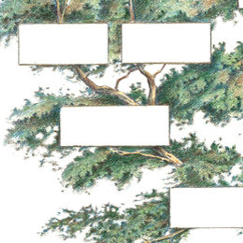 (6 Generations)2021 Family Tree Chart Diy Gift Frameless