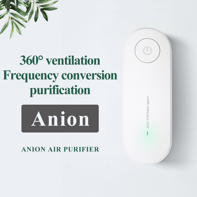 Anion Air Purifier