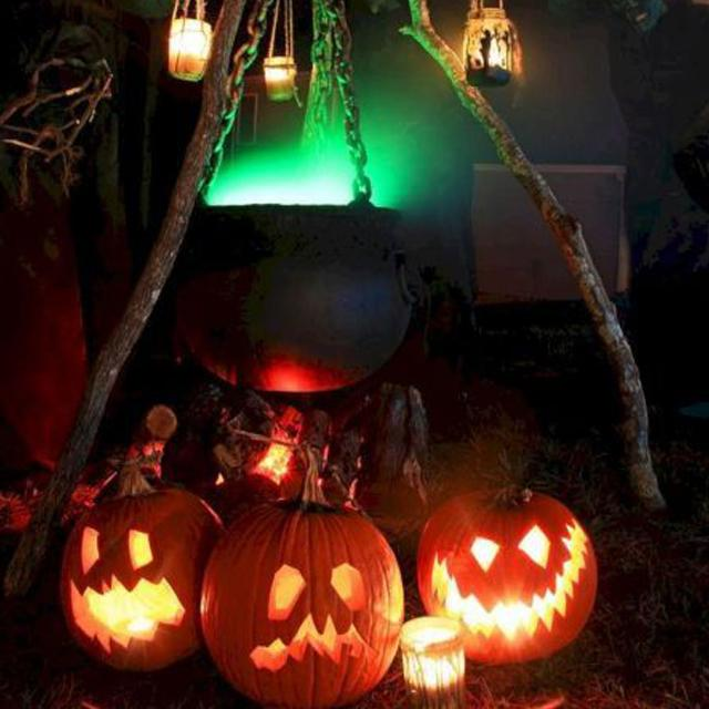 【Factory Outlet】Halloween Sound-Activated Pumpkin with Built-In Speaker