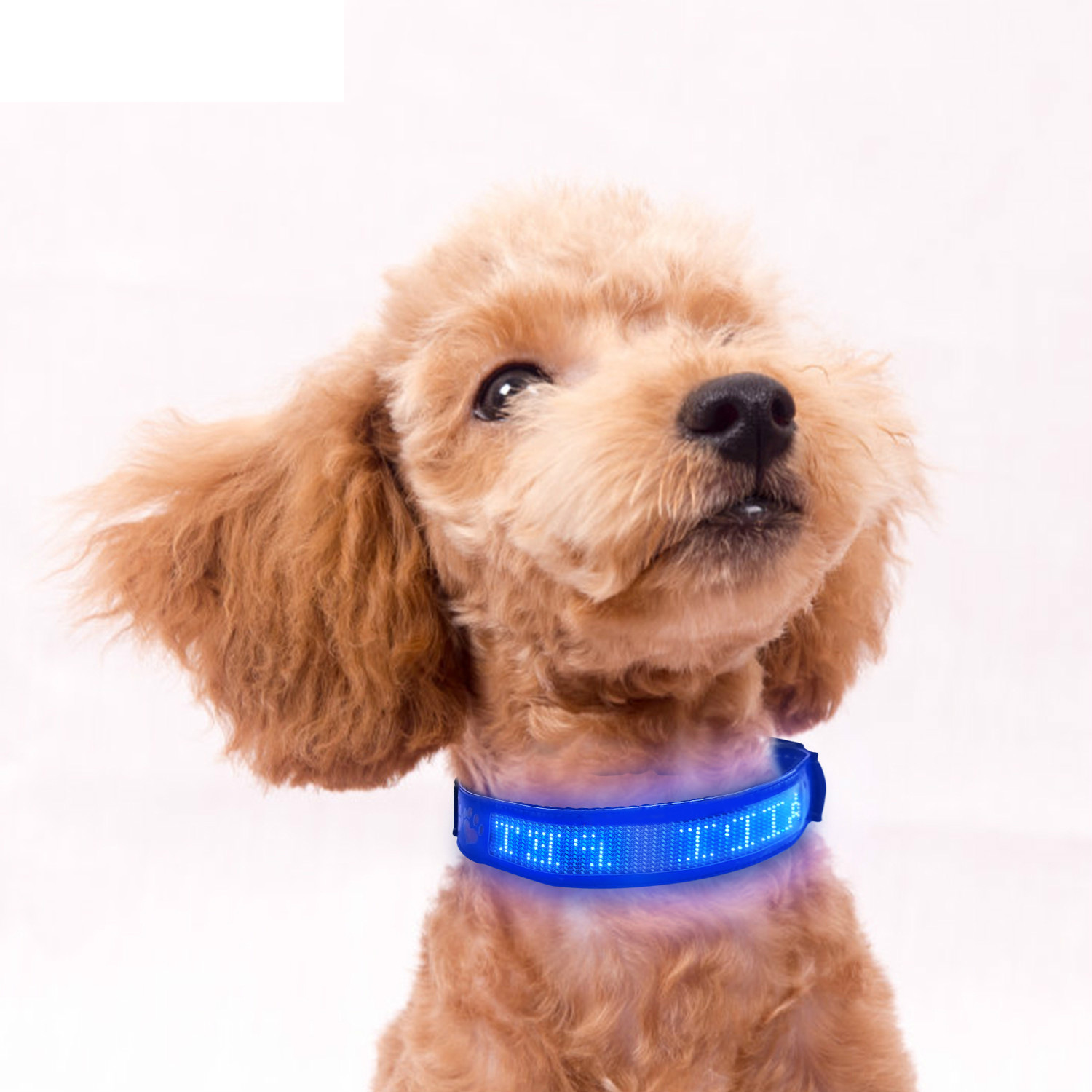 【New Year Promotion】Led Screen Pets Safety Collar