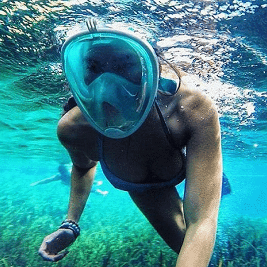 DiveLungs - Full Face Snorkel Mask