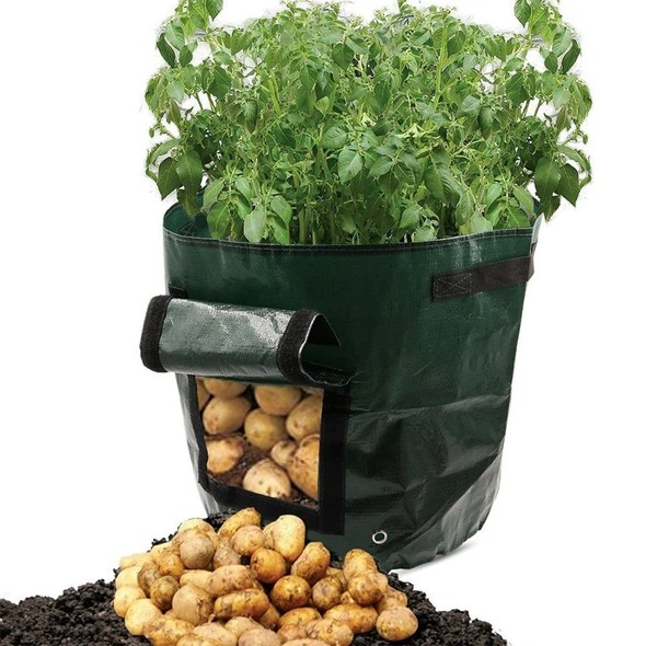 (CLEARANCE SALE )50L Large Capacity Potato Grow Planter PE Container Bag- Buy 4 Free shippng