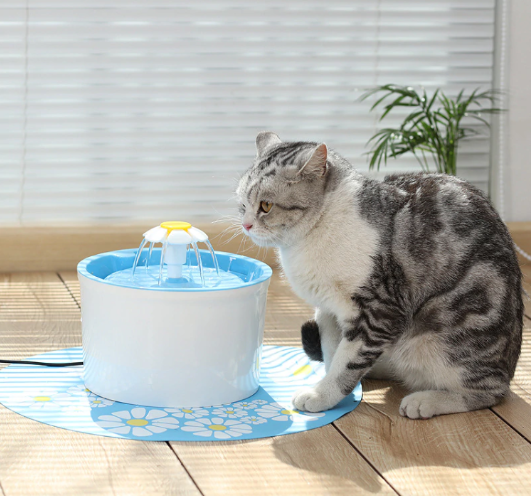 Cat Dog Water Fountain 1.6L Auto Circulating