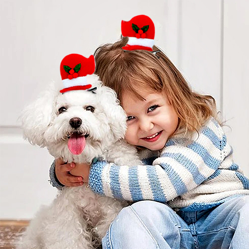 Pet christmas headgear accessories