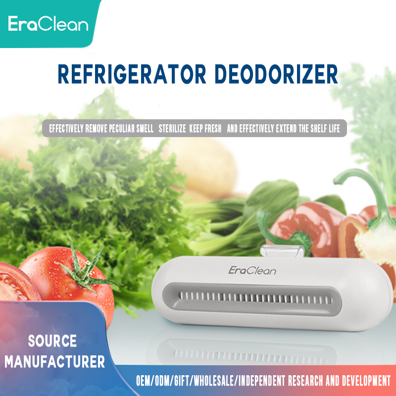 Portable rechargeable refrigerator freshener