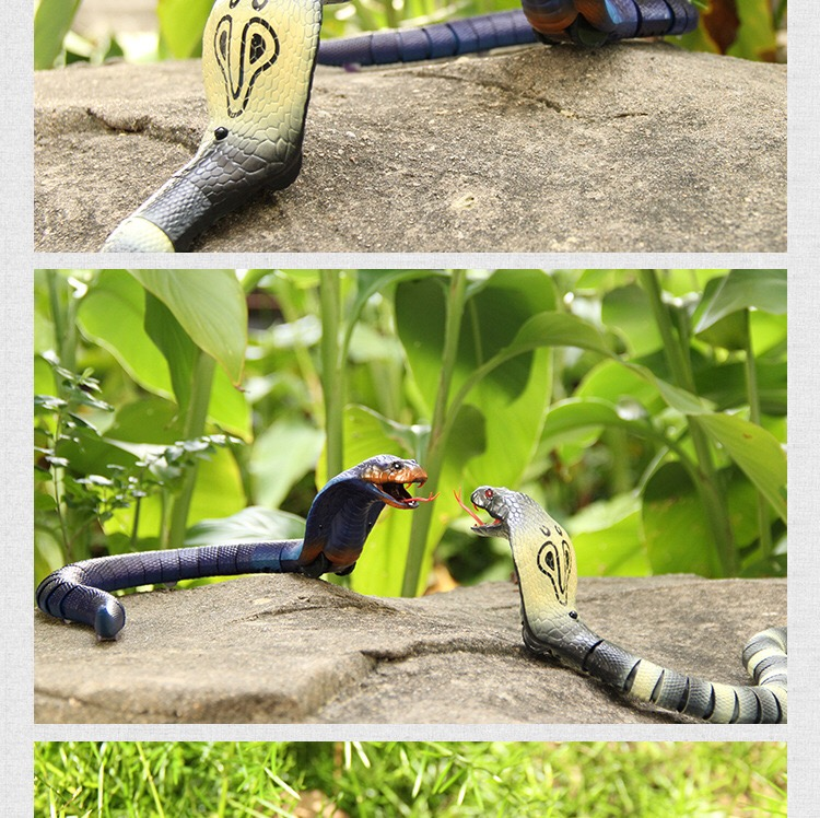 Remote Control Cobra Snake Egg Rattlesnake Animal Trick or Treat Kids Prank Toys Fun Novelty Gift Remote Control Toys (exemption from postage)