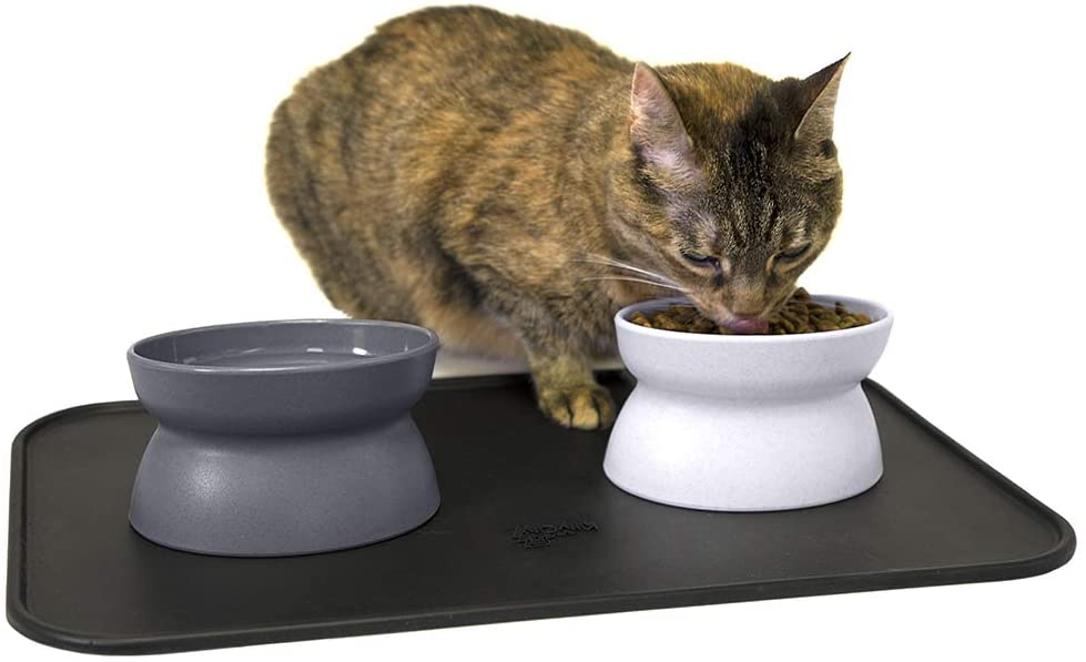 Raised Cat Food Bowl | 2 Bowls and 1 Mat