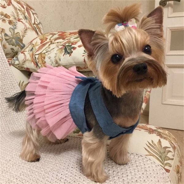 Summer Dress for Dog Pet Dog Clothes Wedding Dress Skirt Puppy Clothing Spring Fashion Jean Pet Clothes XS-XXL