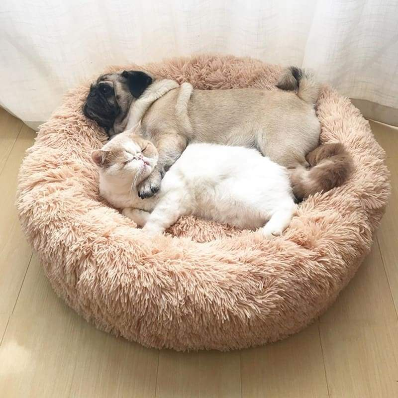 Super Soft Gradient Color Cat Bed Pet Sleep Blanket Plush Cute Donut Puppy Kennel Cat Litter Sleeping Bed