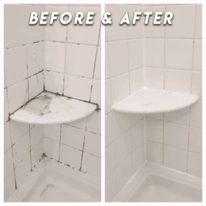 InstaEffect Non-toxic Mould Remover
